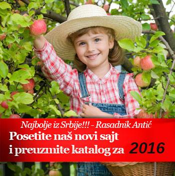 Specijalne sadnice za 2016