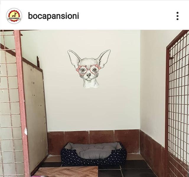 Pansioni za pse Boca